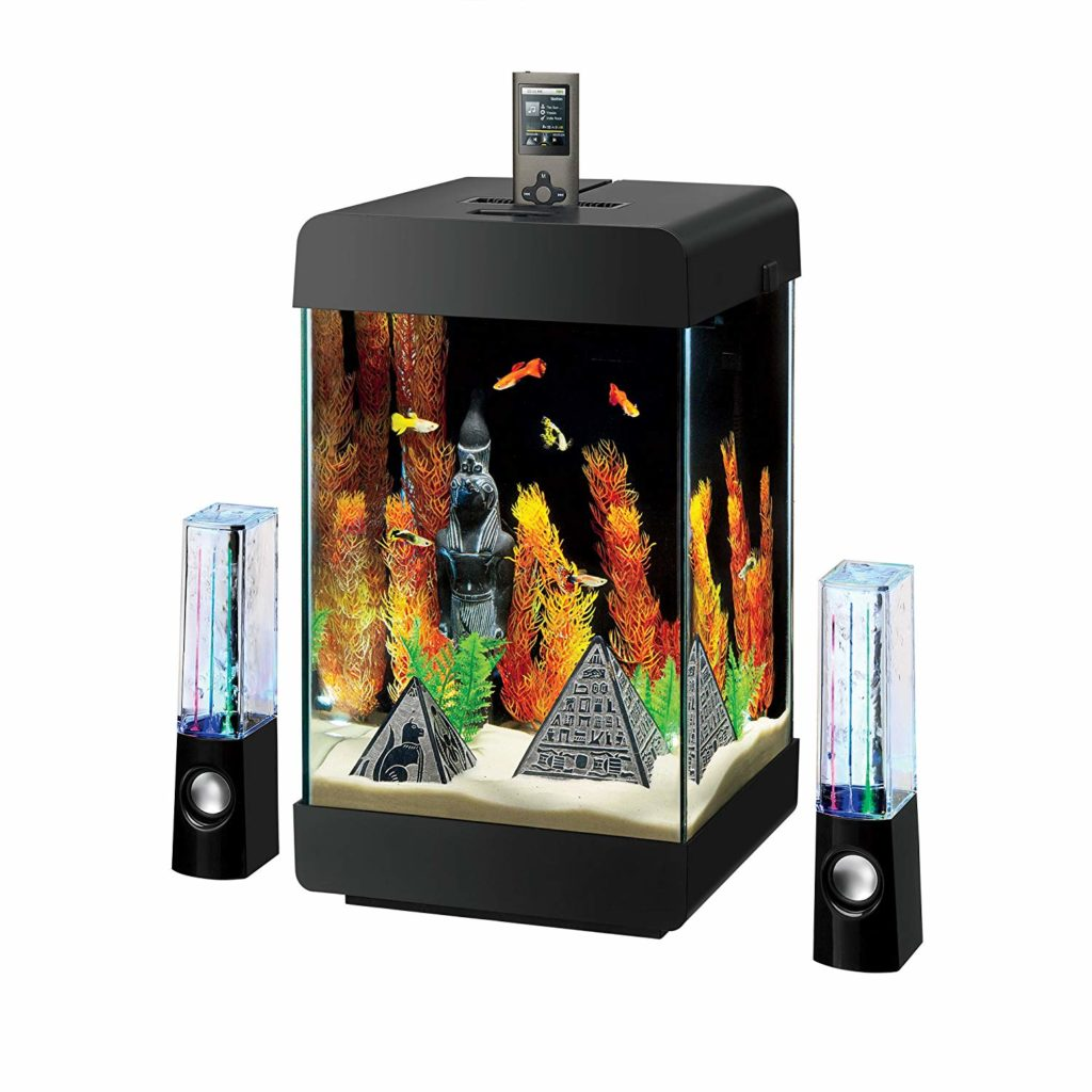 Best Desktop Aquarium tanks in 2019 | InlandAquatics - In