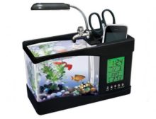 best desktop aquarium for your office