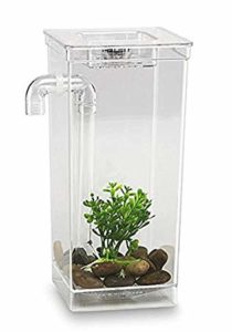 10 Best Self Cleaning Fish Tanks 2020