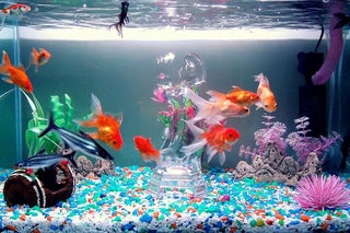 aquarium filter reviews