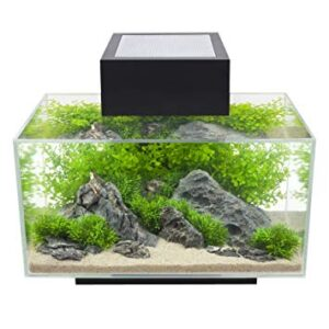 Fluval Edge 6 Gallon Fish Tank - Powerful And Easy To Use