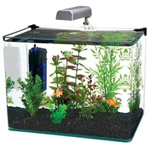 Penn Plax Curved Corner Rimless Aquarium