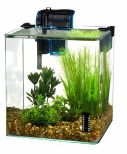 Penn Plax Vertex Rimless Aquarium