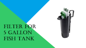 best 5 filter for 5 gallon fish tank