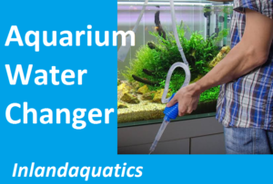 Aquarium water changing equipment